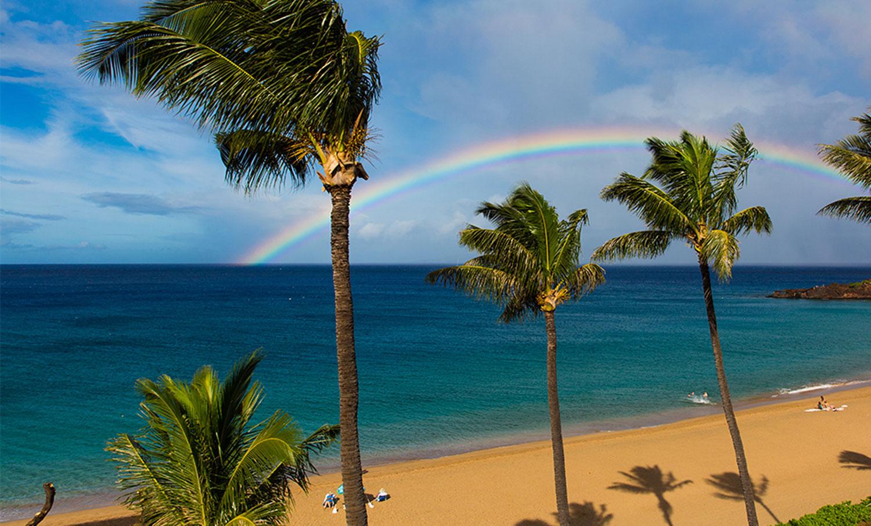 yoga teacher training on Maui
