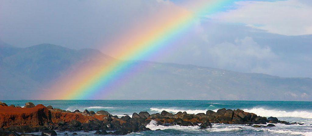 Rainbow banner 5